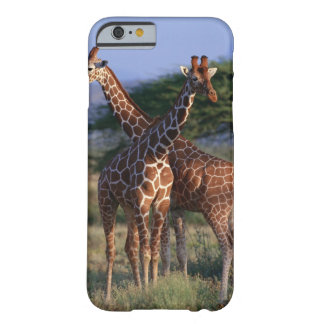 Reticulated Giraffe 2 Barely There iPhone 6 Case