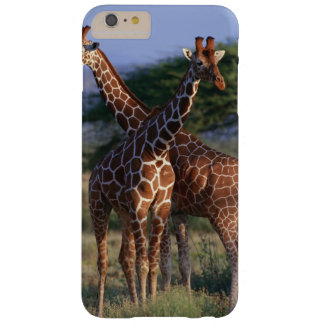 Reticulated Giraffe 2 Barely There iPhone 6 Plus Case