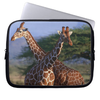 Reticulated Giraffe 2 Laptop Sleeve