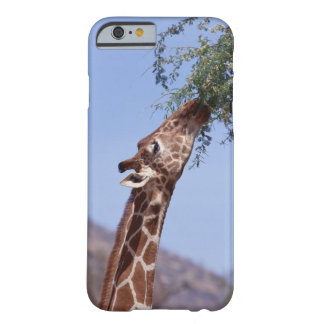 Reticulated Giraffe Barely There iPhone 6 Case