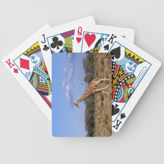 Reticulated Giraffe Bicycle Playing Cards
