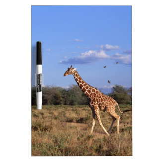 Reticulated Giraffe Dry Erase Board
