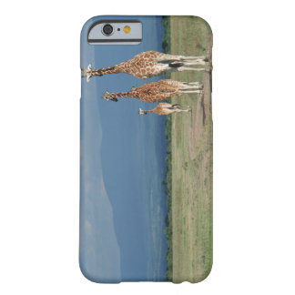 Reticulated Giraffe (Giraffa camelopardalis) 2 Barely There iPhone 6 Case