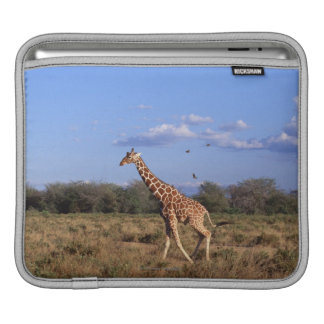 Reticulated Giraffe iPad Sleeve