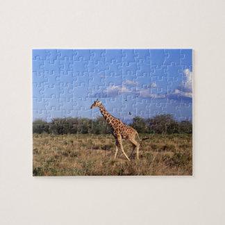Reticulated Giraffe Jigsaw Puzzle