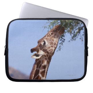Reticulated Giraffe Laptop Sleeve
