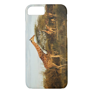 Reticulated Giraffes, Giraffe camelopardalis 2 iPhone 8/7 Case