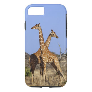 Reticulated Giraffes, Giraffe camelopardalis 3 iPhone 8/7 Case