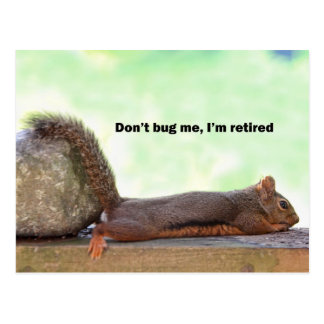 Retirement Humor Squirrel Postcard