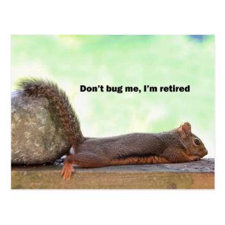 Retirement Humor Squirrel Postcard