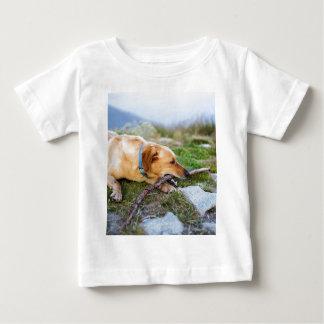 Retriever with Stick Baby T-Shirt
