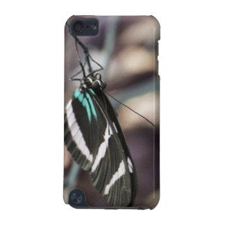 Retro Butterfly iPod Touch (5th Generation) Covers
