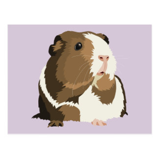 Retro Guinea Pig 'Betty' Postcard