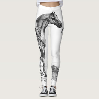 Retro horse muscle anatomy picture leggings