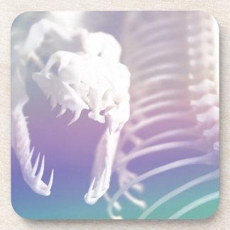 Retro Rainbow Snake Skeleton Photography Coasters