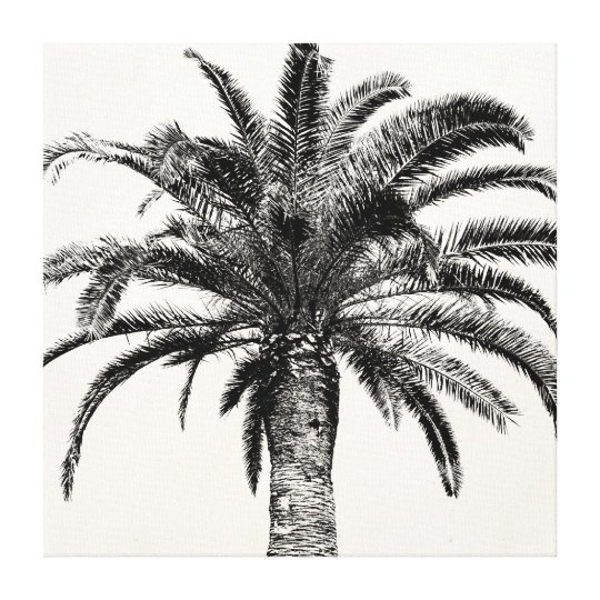 Retro Tropical Island Palm Tree in Black and