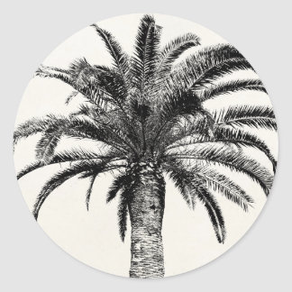 Retro Tropical Island Palm Tree in Black and White Round Sticker
