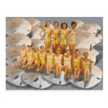 Retro Vintage Bathing Beauties on Sand Dollars Post Card