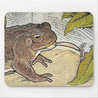 Retro Vintage Frog Book Illustration Mousepad