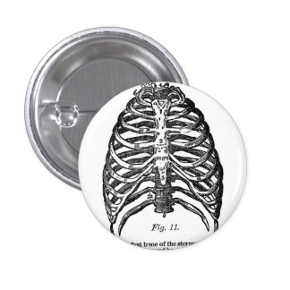 Retro Vintage Kitsch Anatomy Medical Rib Cage 3 Cm Round Badge