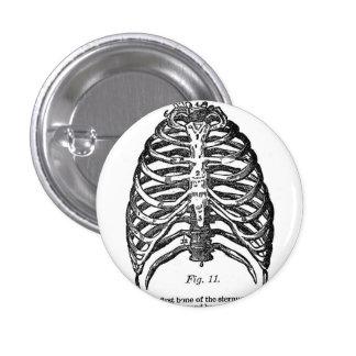 Retro Vintage Kitsch Anatomy Medical Rib Cage 3 Cm Round Badge