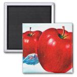 Retro Vintage Kitsch Apple Art B.C. Apples Fridge Magnet