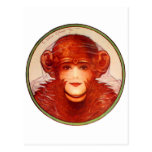 Retro Vintage Kitsch Illusion Chimp or Woman? Post Card