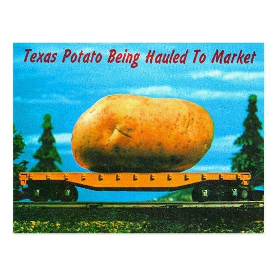 Retro Vintage Kitsch Texas Sized Potato Postcard