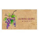 Retro Vintage Vineyard Harvest Grapes Winery