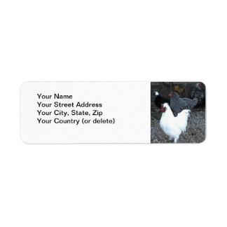 Return Address Label: Chickens