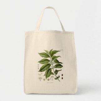 Reusable Coffee Plant