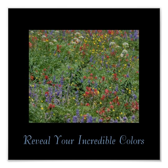 Reveal Your Incredible Colours Poster