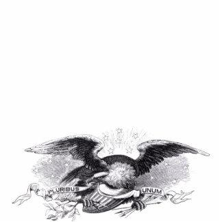 Revolutionary War Eagle Photo Sculpture