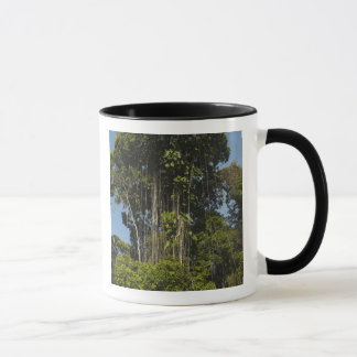 Rewa River edge Rainforest Guyana Mug