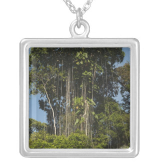 Rewa River edge Rainforest Guyana Silver Plated Necklace