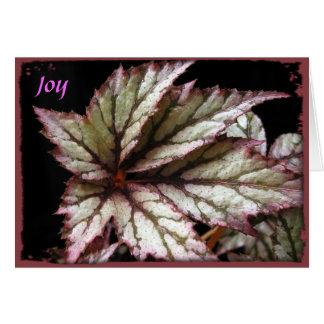 Rex Begonia Greeting Card