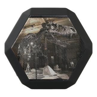 Rex Indeed Black Bluetooth Speaker