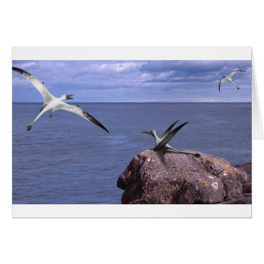 Rhamphorhynchus Blank Card