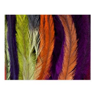 Rhea Feather Abstract Postcard