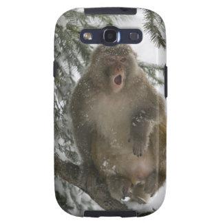 Rhesus Macaque monkey (Macaca mulatta) sitting Samsung Galaxy SIII Case