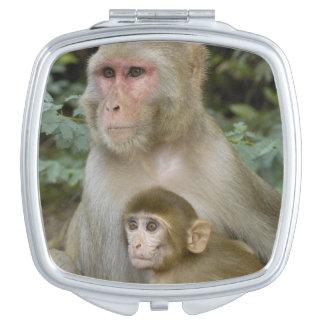 Rhesus Macaques Macaca mulatta) mother & baby Mirror For Makeup
