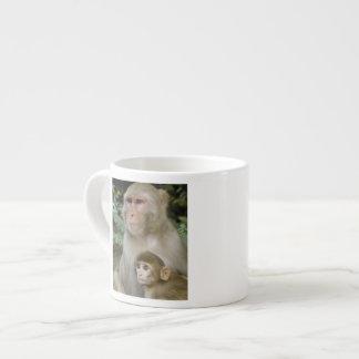Rhesus Macaques Macaca mulatta) mother & baby Espresso Mug