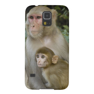 Rhesus Macaques Macaca mulatta) mother & baby Galaxy S5 Cover