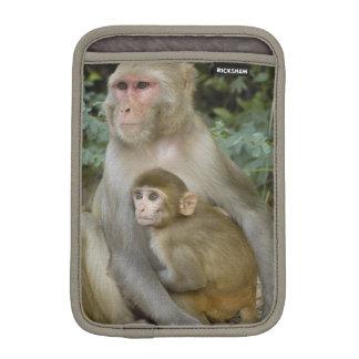 Rhesus Macaques Macaca mulatta) mother & baby iPad Mini Sleeve