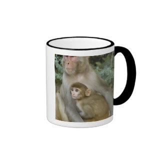 Rhesus Macaques Macaca mulatta) mother & baby Mug