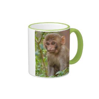 Rhesus Monkey Baby, Monkey Temple, Jaipur Mugs