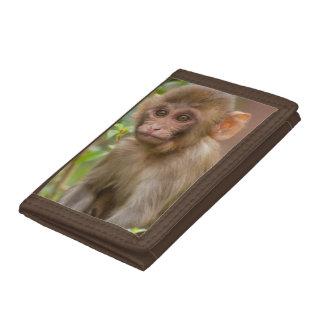 Rhesus Monkey Baby, Monkey Temple, Jaipur Trifold Wallet
