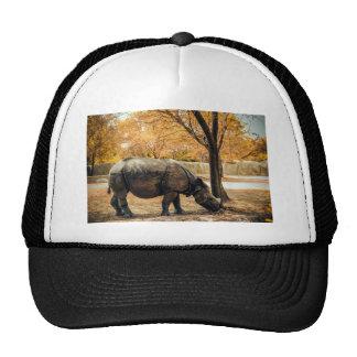rhino-9t5 cap
