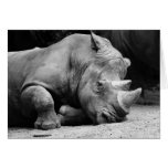 Rhino Black and White Greeting Card