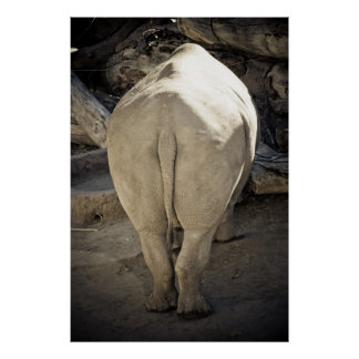 Rhino Butt Poster